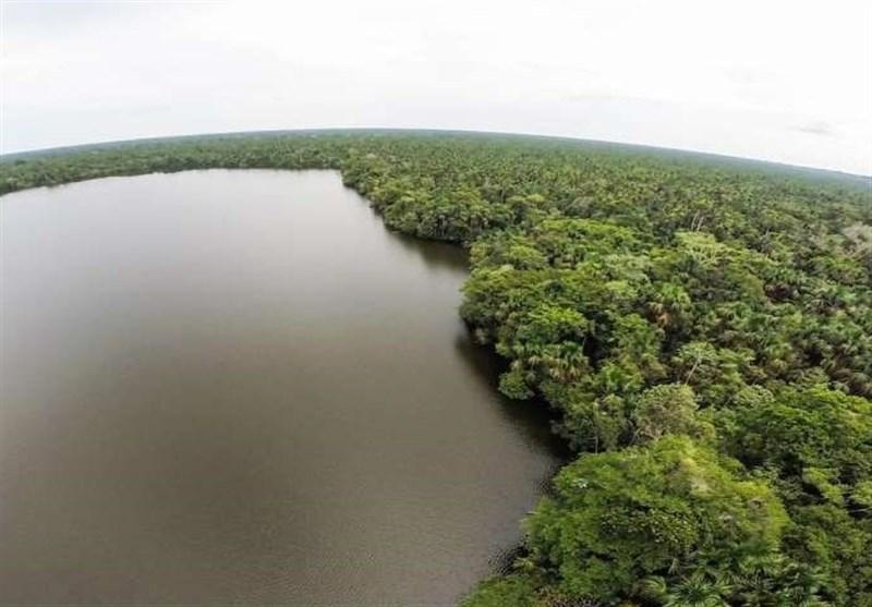 یک دهه جنگل زدایی گسترده در آمازون