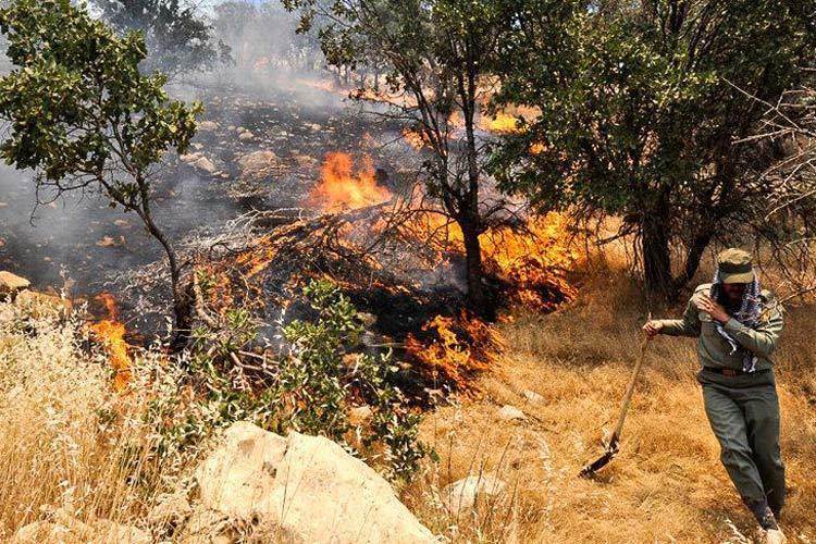 مراتع کوزران کرمانشاه در آتش سوخت