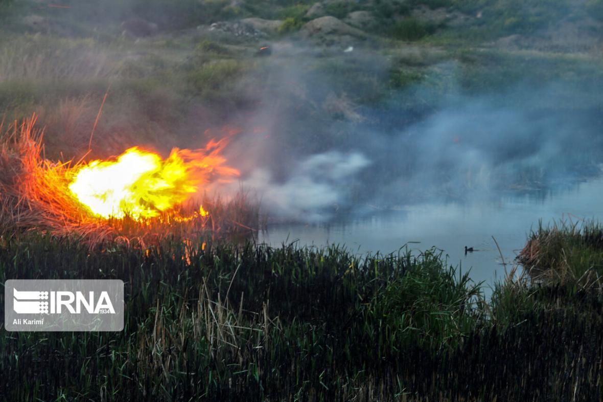 خبرنگاران مهار آتش سوزی در بخشی از جنگل خسرج شوش