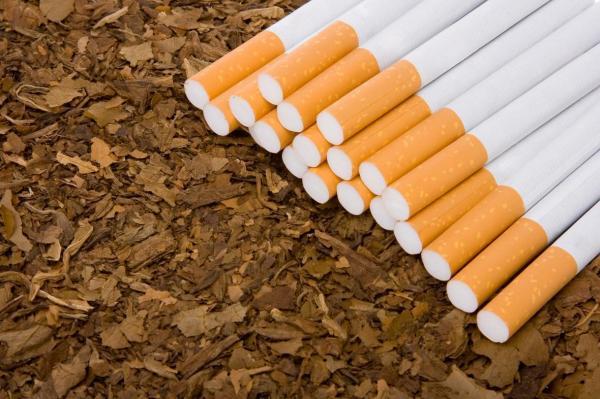 آخرین شرایط صادرات و قاچاق سیگار